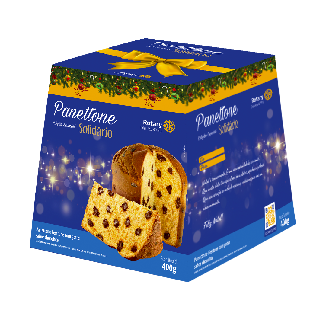 Panettone Chocolate 3D PNG
